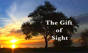 the-gift-of-sight